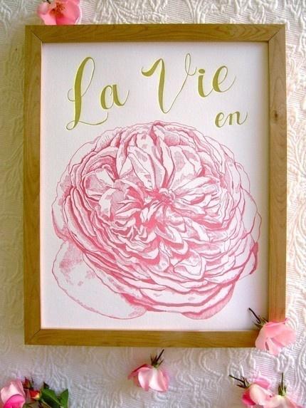 la vie en rose - the life of pink
