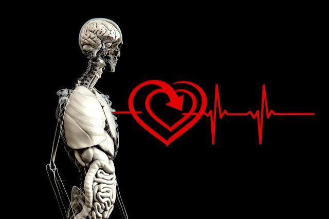 Pin On العالم الصحة