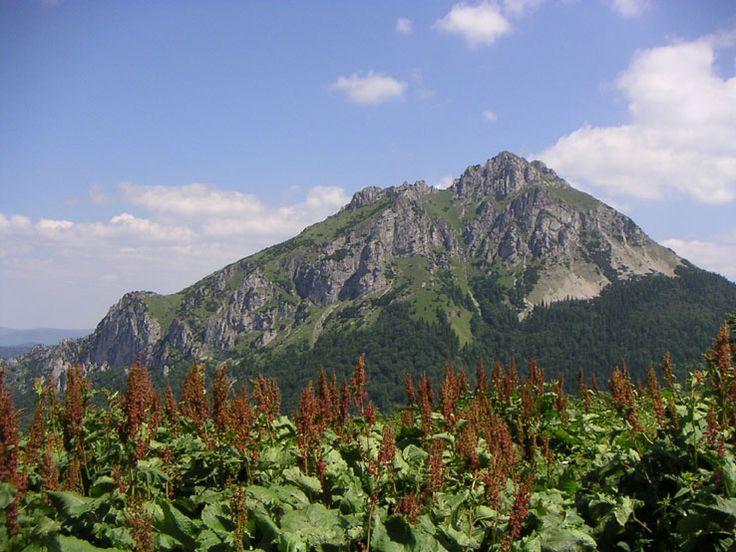 Slovakia, Great Rozsutec