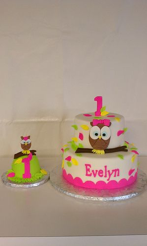 Evelyns First Birthday owl themed cake and matching smash cupcake