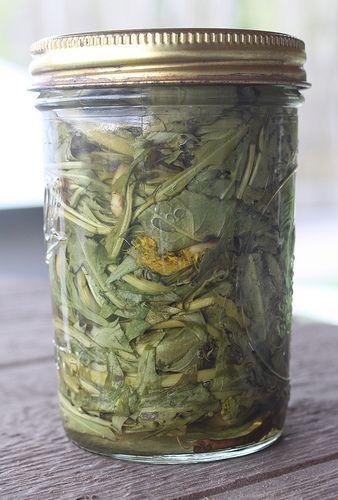 detoxifying dandelion tincture recipe.