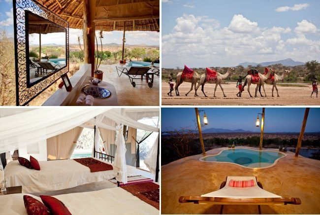 The Big Five: Safari Honeymoons in Africa