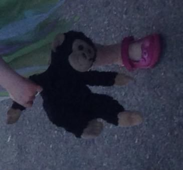 Lost on 05 Sep. 2016 @ Budlake , devon. BoBo is a medium sized black monkey with…