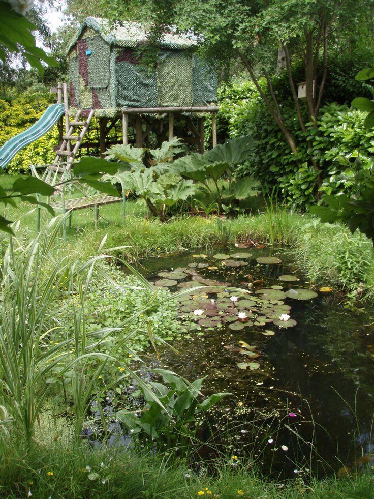 13 best small wildlife ponds images on pinterest pond for Backyard pond maintenance