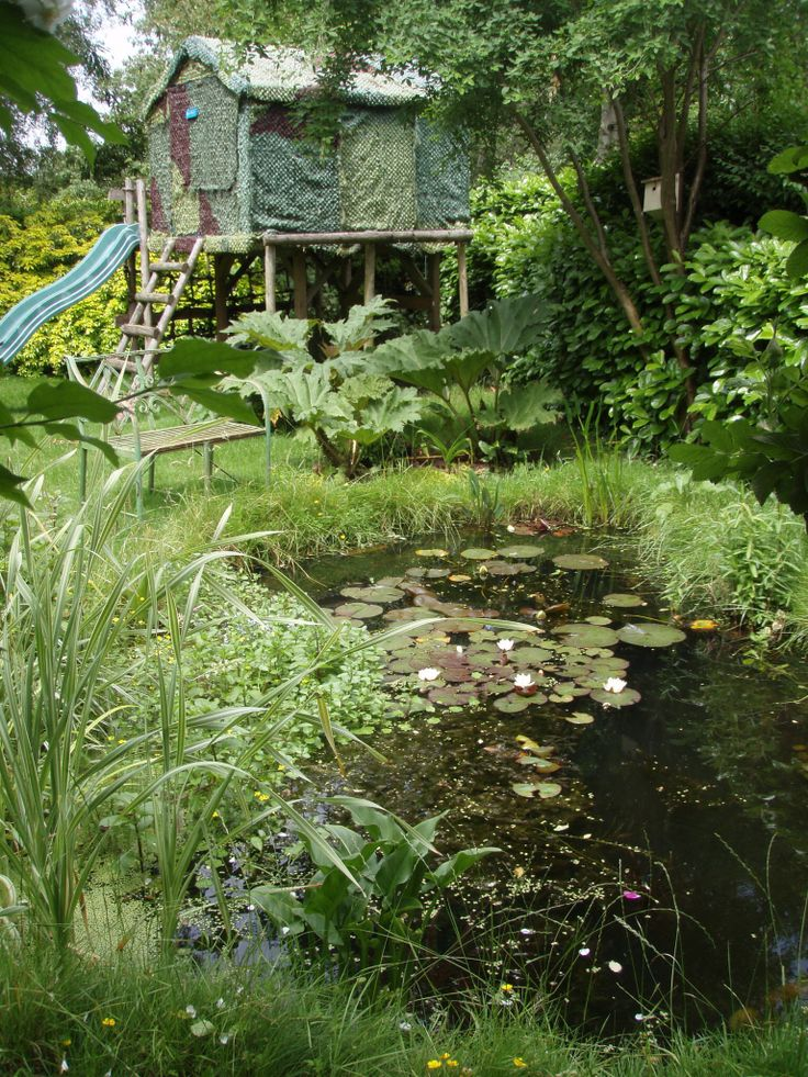 73 Pond Images Let You Dream Of A Beautiful Garden: 17 Best Images About Ponds On Pinterest