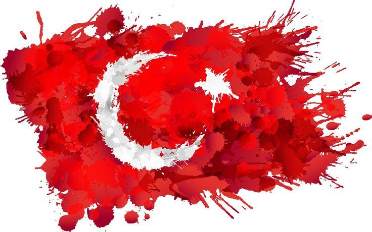 türk bayrak ayyıldız