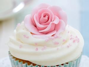 Cake crafting projects