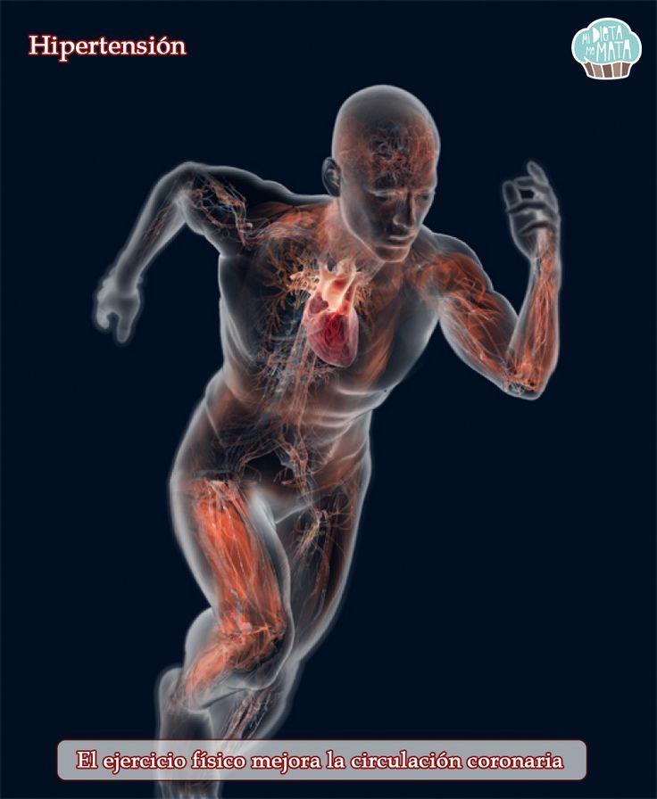 #Hipertensión: El #ejercicio físico mejora la #circulación coronaria