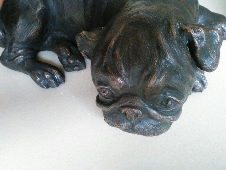 Bronze pug