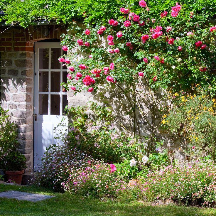 jardinage comment se d barrasser des insectes nuisibles. Black Bedroom Furniture Sets. Home Design Ideas