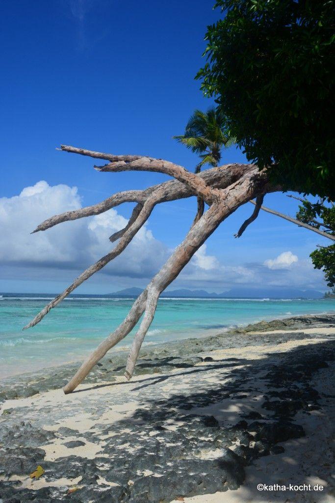 Flitterwochen auf den Seychellen - meine absolute Empfehlung für unvergessliche Tage findet ihr hier!