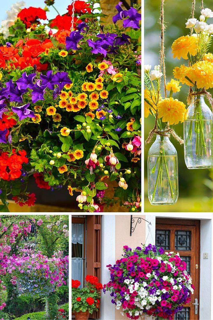 13 best Gardening images on Pinterest   Gardening, Pots and Garden ...