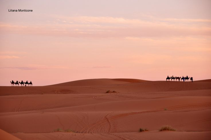 Sunrise in the ahara's desert.  Alba nel deserto del Sahara.