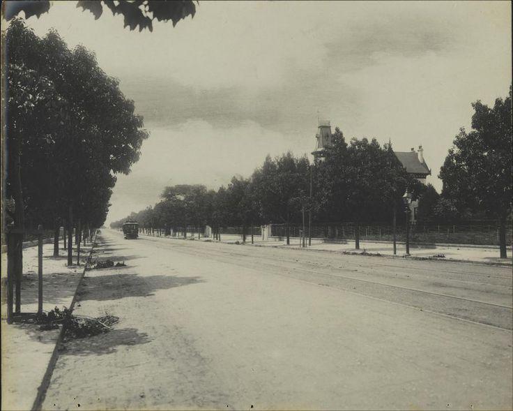 Av. Paulista - Manuel, Frederic-1906- Brasiliana fotografica.BN