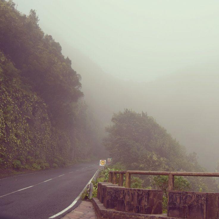 Parque Natural Garajonay! La Gomera