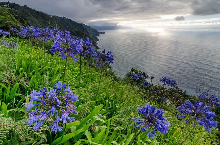 Madeira Island by PhotonPhotography -Viktor Lakics on 500px