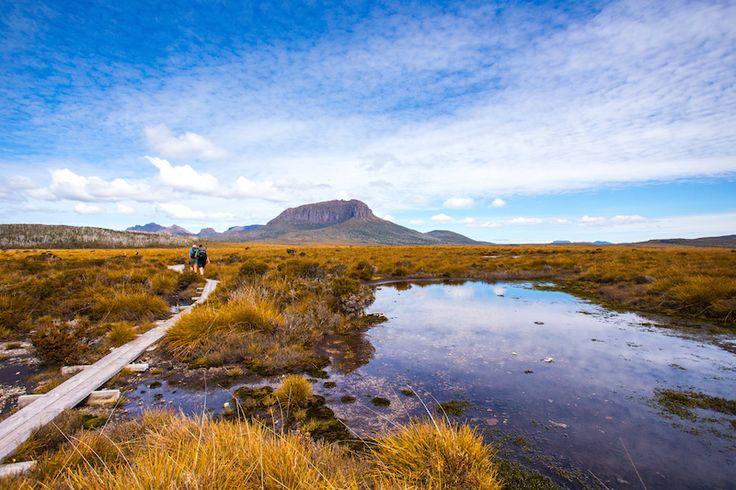 Cradle Mountain Huts Walk by Tasmanian Walking Company   Great Walks of Australia
