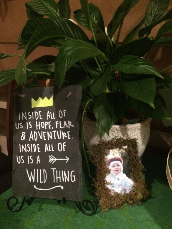 Paper vibes, tree, leaves, Pom Pom, wild one, where the wild things are, party, birthday, boy, moss, chalkboard, frame, plant