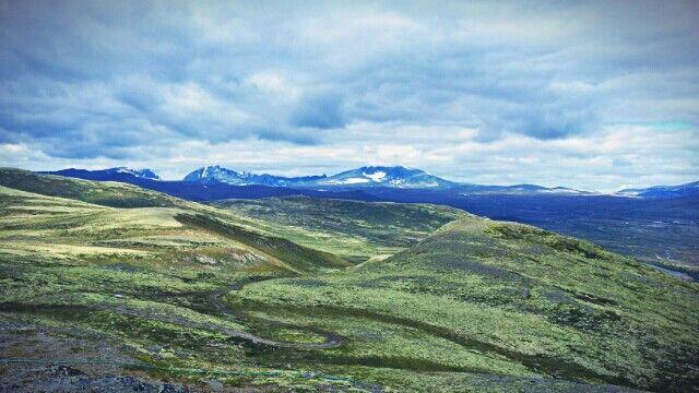 Dovrefjell-Sunndalsfjella National park, Norway