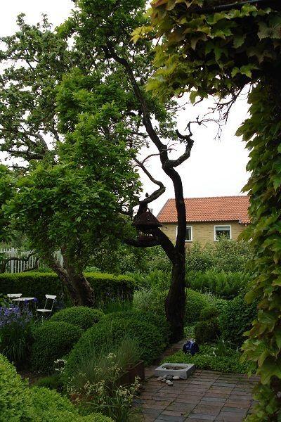 Besök den kända trädgårdsprofilen Ulla Molins trädgård i Höganäs. Trädgården blev kulturminnesförklarad våren 2010. Privatägd, visas efter ök.