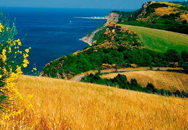 Von Gabicce Mare aus führt eine Straße voller atemberaubender Abschnitte und Panoramen etwa 20 km lang mitten durch das Naturschutzgebiet des Parco Regionale del Monte San Bartolo, bis man an weitere zauberhafte Lidos gelangt, zum Beispiel in Pesaro, oder an die Strände pittoresker Fischerdörfer wie Casteldimezzo, Fiorenzuola di Focara und Santa Marina Alta.   Foto: Parco Regionale del Monte San Bartolo