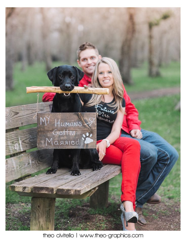 My humans are getting married engagement shoot>>>> Kriss ur so doing this just for fun for me !!!!     :)