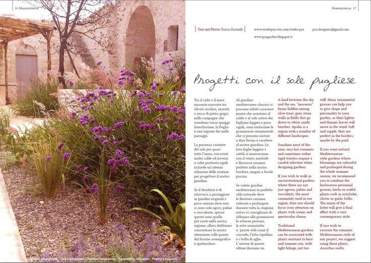 mediterranean garden http://issuu.com/blossomzine/docs/n6_autumn_2014_blossom_zine/17?e=7602517/8959169