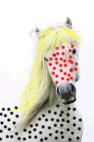 going for party  by mahesh motianiChase Rainbows, Mahesh Motiani, Design Ideas, Favorite Art, Cheval, Artsy Fartsy, Circles Go, Polka Dottey Horsey, Parties Design