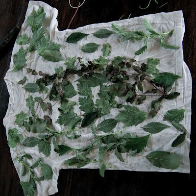GREAT tutorial for dying a T-shirt (or anything) with nature! Eco dying - Tutorial, T-shirt makeover | NaKIN soap blog