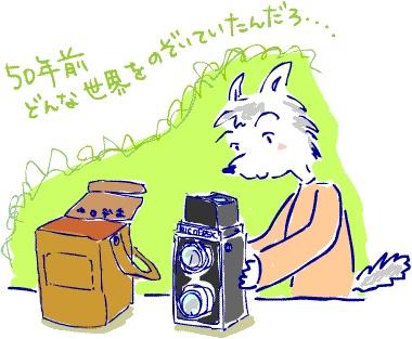 ~自然の休憩所~ Berry's Life うっかり日記 2012年9月28日 夕方、ダックスが仕事の合間にふらりと休憩所にきた。  最近ゲットしたアンティークのカメラを持って。。。    Ricohfrex Model とかの50年ぐらい前のカメラ。  (イラストが抵当なのはご容赦ください)  箱を上から覗くようになっていて、  すべて機械式。  皮のケースの少し破れているけれど、  当時の持ち主の名前が書いてある。    50年以上たった今でも  フィルムをいれればちゃんと撮影はできる。  最初の12枚を撮影してみて、  ちゃんと撮影できているかダックスも不安らしい。    デジカメであれば撮影したものがその場で見れるので  バシバシ撮影してダメなデータは消せばいい。  でもフィルムは現像するまでわからない。  そのドキドキ感!  1回1回のシャッターのタイミングが慎重になる。  経験と感で、それをつかまなければならない。   http://berryslife.com
