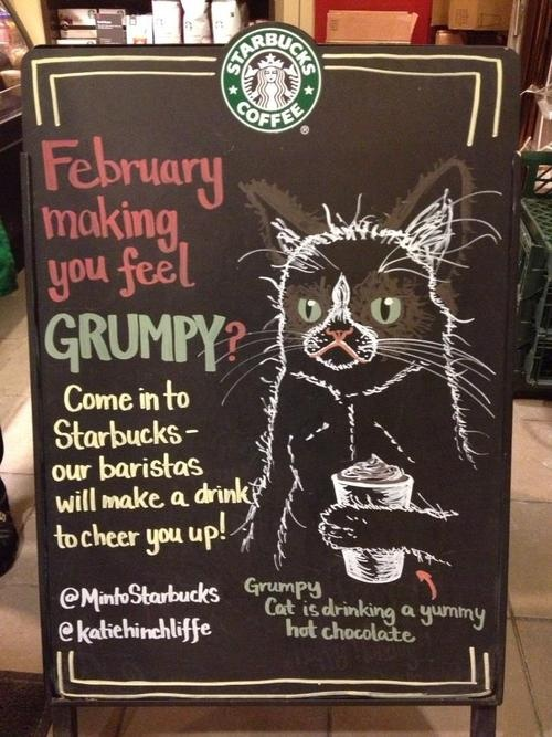 Starbucks Grumpy Cat sign #GrumpyCat