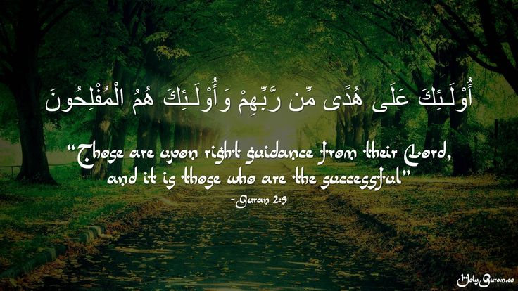 """""""Those are upon right guidance from their Lord, and it is those who are the successful"""" -Quran 2:5"""