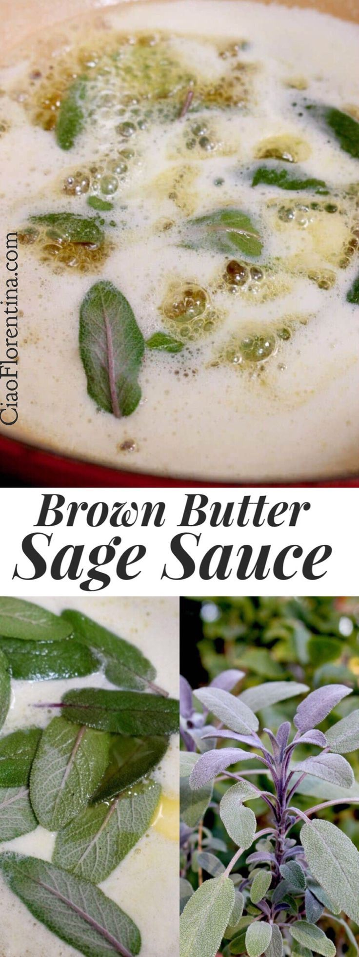 """Brown Butter Sage Sauce Recipe or """" burro bruno e salvia """" perfect to toss with Butternut Squash or mushroom ravioli, fluffy gnocchi and sprinkled with toasted bread crumbs or pine nuts 