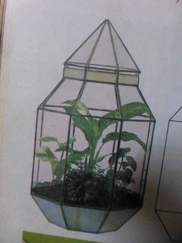 47 best images about make it terrarium on pinterest opaline hanging glass terrarium and. Black Bedroom Furniture Sets. Home Design Ideas