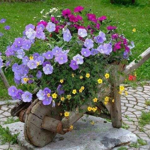 Resultado de imagen de flor campanilla decoracion