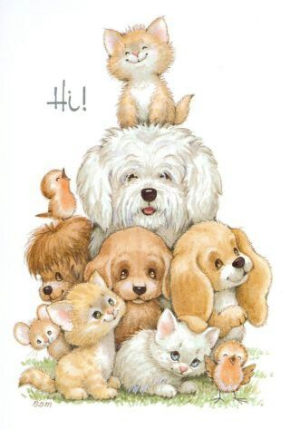 Hi ! - puppies and kittens.