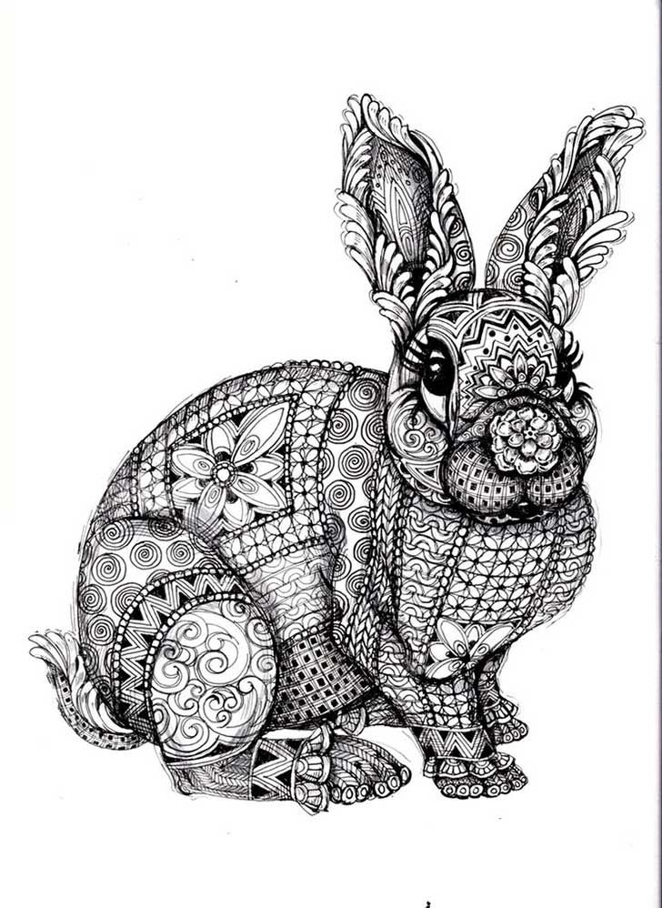 Ms de 25 ideas increbles sobre Dibujo de conejo en Pinterest