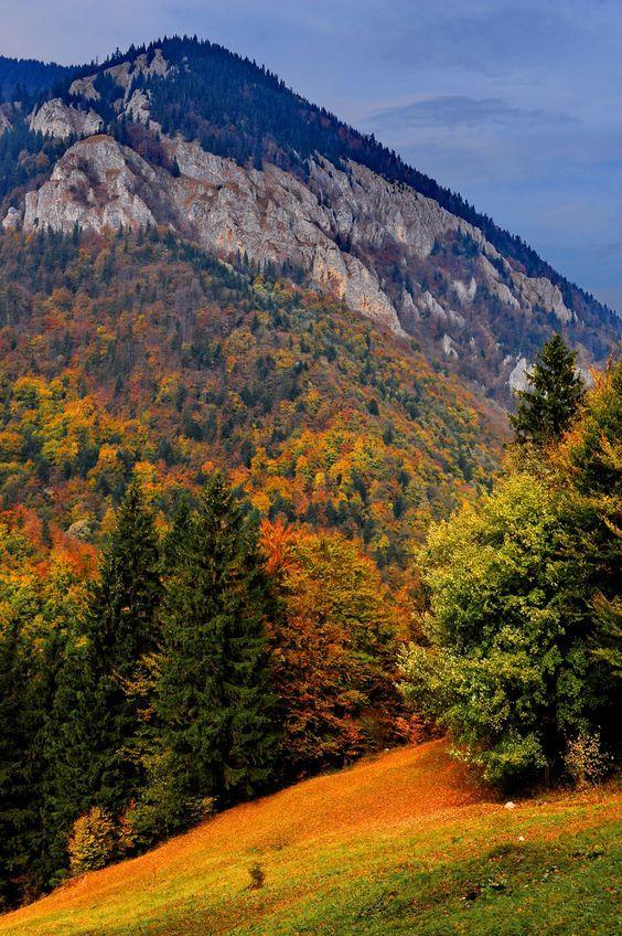 Carpathian mountains, Romania. ...