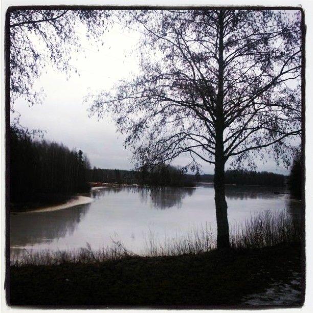 Hyinen keväinen järvi