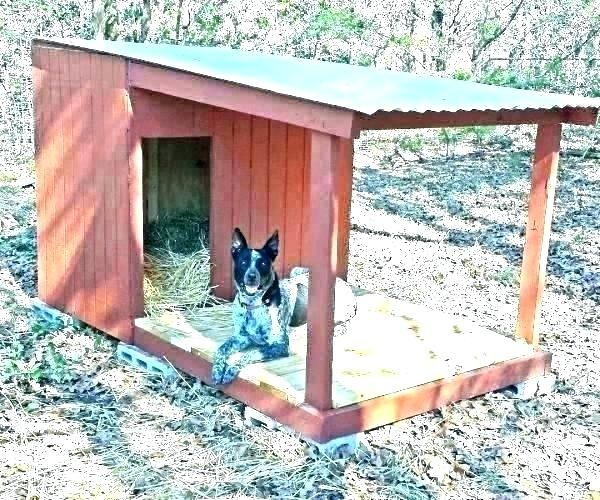 How To Make House Not Smell Like Dog Build A Dog House Dog House Plans Wooden Dog House