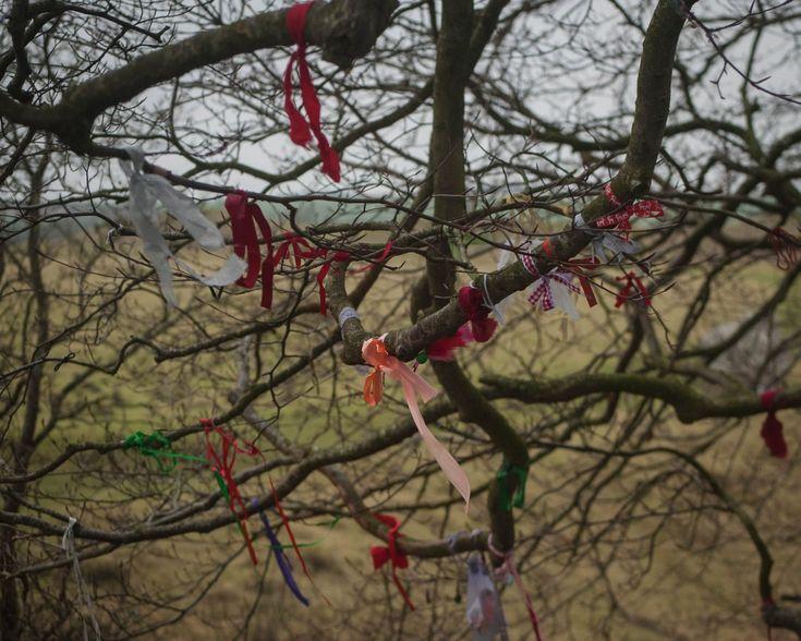 Avebury in the Winter | Weekend Adventuring - Very Much So...