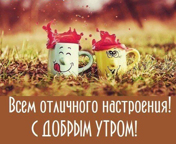 https://yandex.ru/images/search?p=3