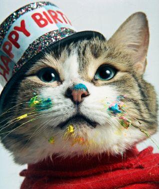 Sophie's Birthday wishes