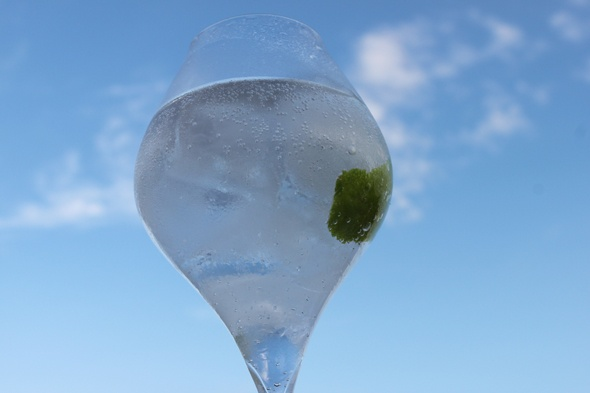 Preparación del Gin Tonic perfecto:  - Ginebra enfriada en el congelador (3-5 cl.)  - 1 Bot de Tónica (20 cl.) en la nevera (imprescindible para mantener la burbuja).  - 4 Hielos macizos y muy fríos, preferiblemente procedentes de agua ozonizada (hielo de bolsa)  - 1 Limón muy fresco.  - 1 Copa de cristal fino (que no sea muy ancha ni muy abierta en la boca, así mantiene los aromas).  - Sencillez, cariño, compresión y sentido común.  Por cortesía de http://www.perfectgintonic.com
