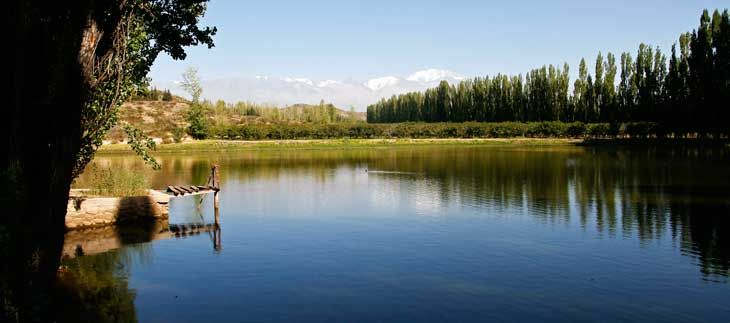 Reportaje sobre Mendoza, provincia argentina famosa por sus bodegas...
