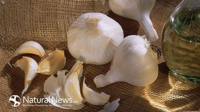 Healing Garlic Soup, 100 Times More Powerful Than Antibiotics