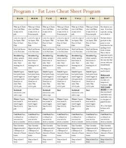 Diet 4 hour pdf
