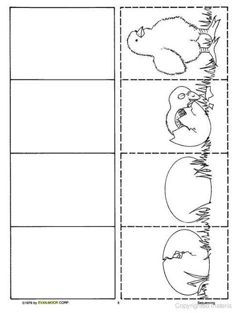 life cycle chick worksheet for kids | Crafts and Worksheets for Preschool,Toddler and Kindergarten