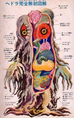 Japanese monster anatomy
