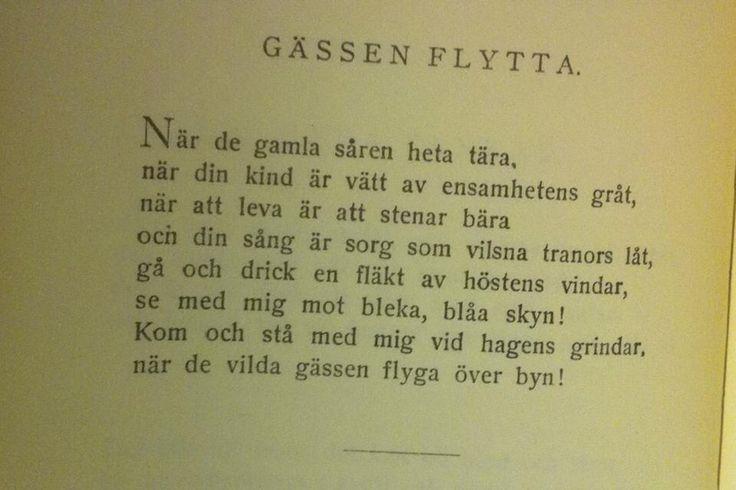 Dan Andersson - Gässen flytta